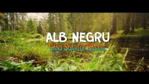 ALB NEGRU - Cand Soarele Rasare